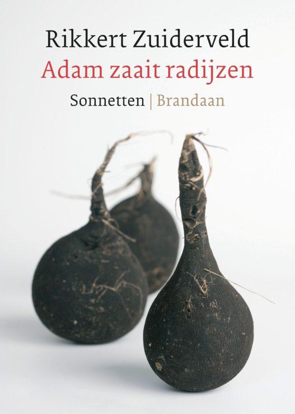Adam zaait radijzen